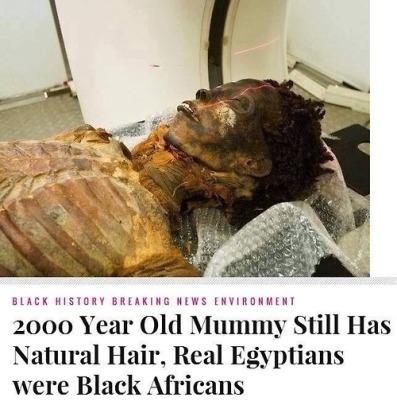 !  !  !  A  A  A  BLACK EGYPTIANS