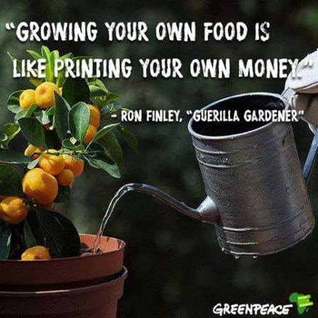 !  !  !  A  A  AGrowing own food printing money