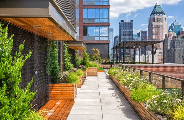 12real-green-roofs-inyt-3-02-articleLarge